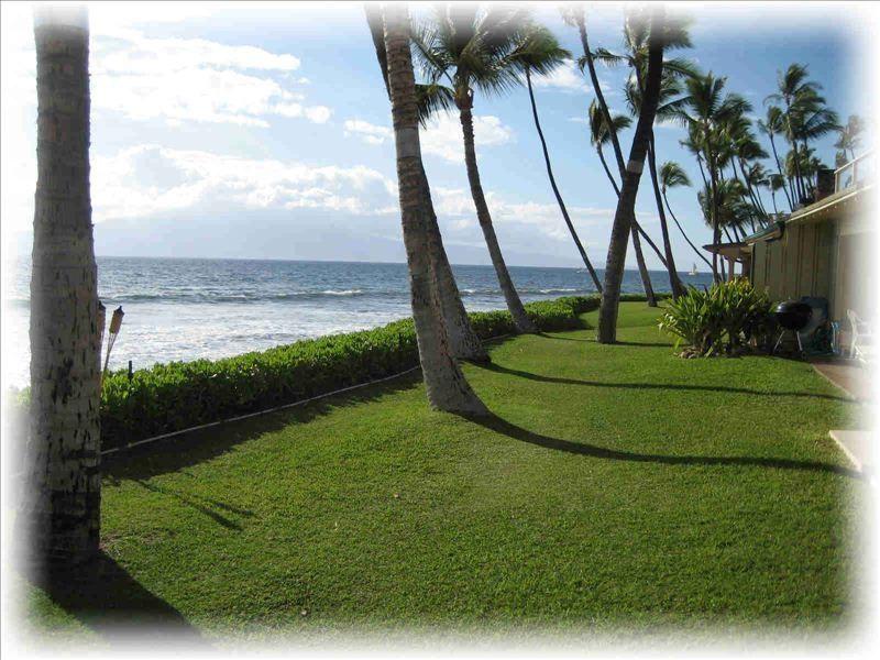 Puamana Oceanfront Condo (#19-3) photo