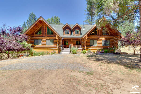 The Gold Rush Cabin photo