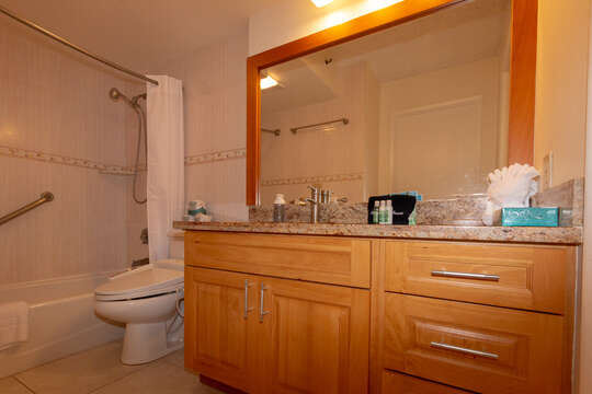 Bathroom vanity and washlet