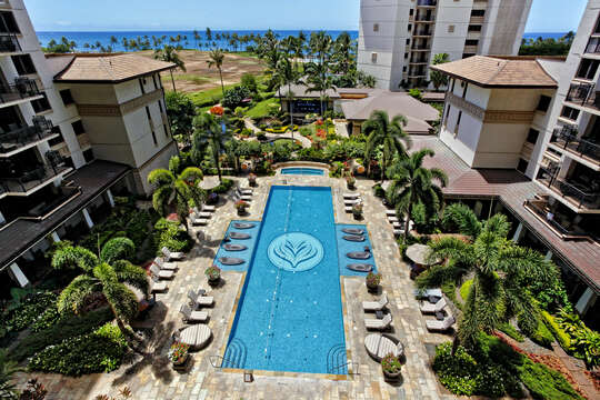 Ocean & Pool View from the Lanai