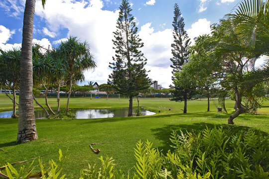 The 10th Fairway of Ko Olina's Championship Golf Course, as Seen from the Home's Lanai