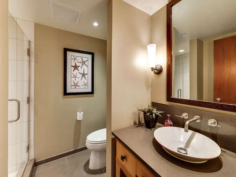 The Third Full Bath, with a Walk-in Shower