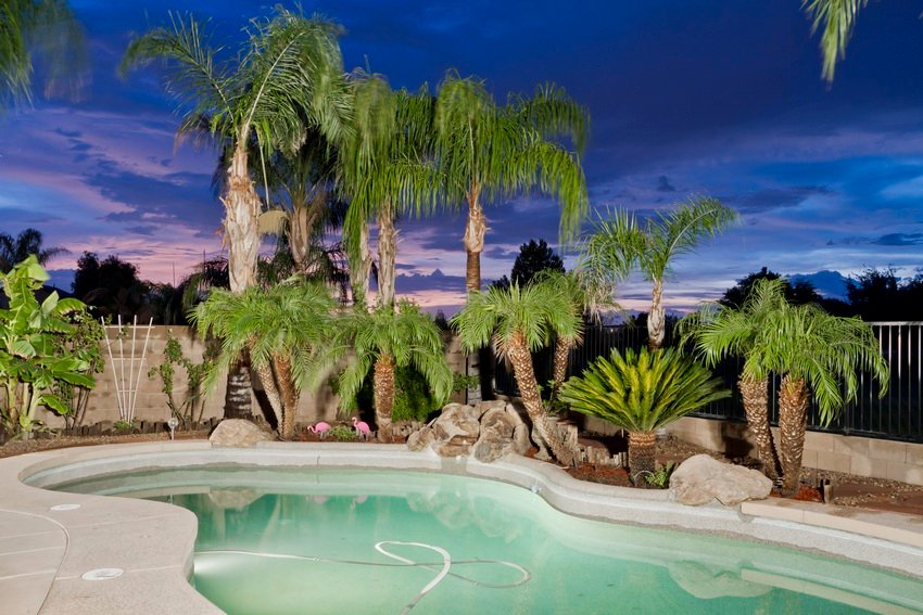 Tropical Pool Overlooking the Green