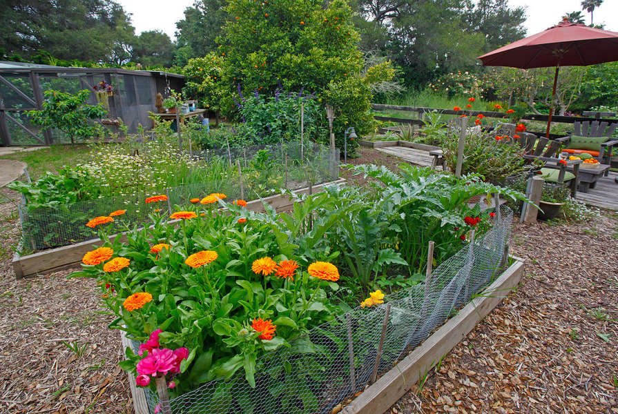 Owners' love of organic gardening is evident
