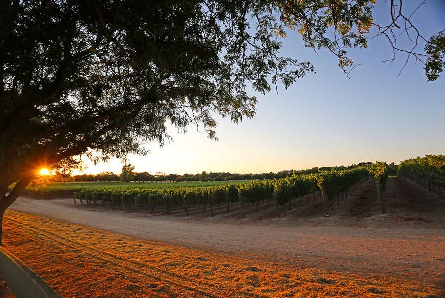 Cruise beautiful Santa Barbara Wine Country