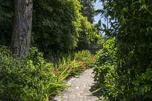 Garden walk-way
