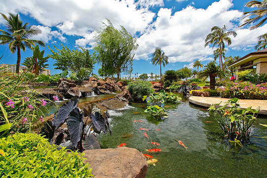 Beach Villas Koi Pond