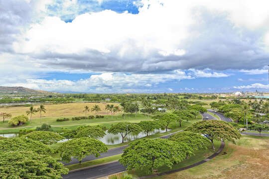 Golf Course View from the Lanai