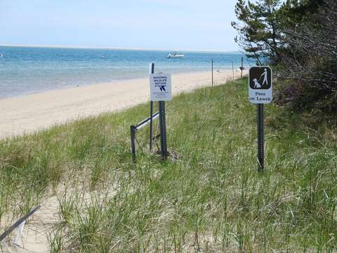 Monomoy Wildlife Refuge just a mile away, walk your dog at this pet friendly spot! Chatham Cape Cod New England Vacation Rentals