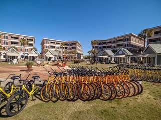 Bike rentals close by