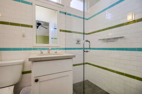 Master ensuite bathroom with shower