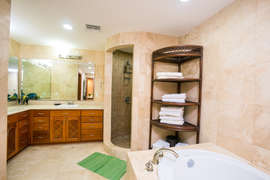 Walk in shower in addition to tub