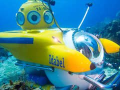 Step aboard the Yellow Submarine and explore depths up to 2,000 feet!