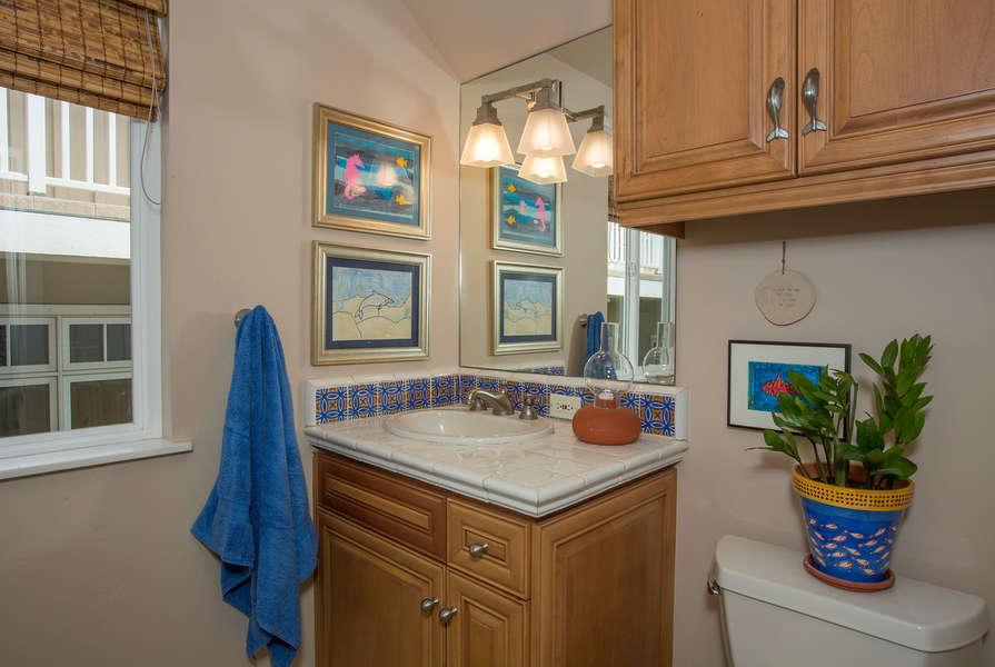 Downstairs Bathroom w/walk-in shower