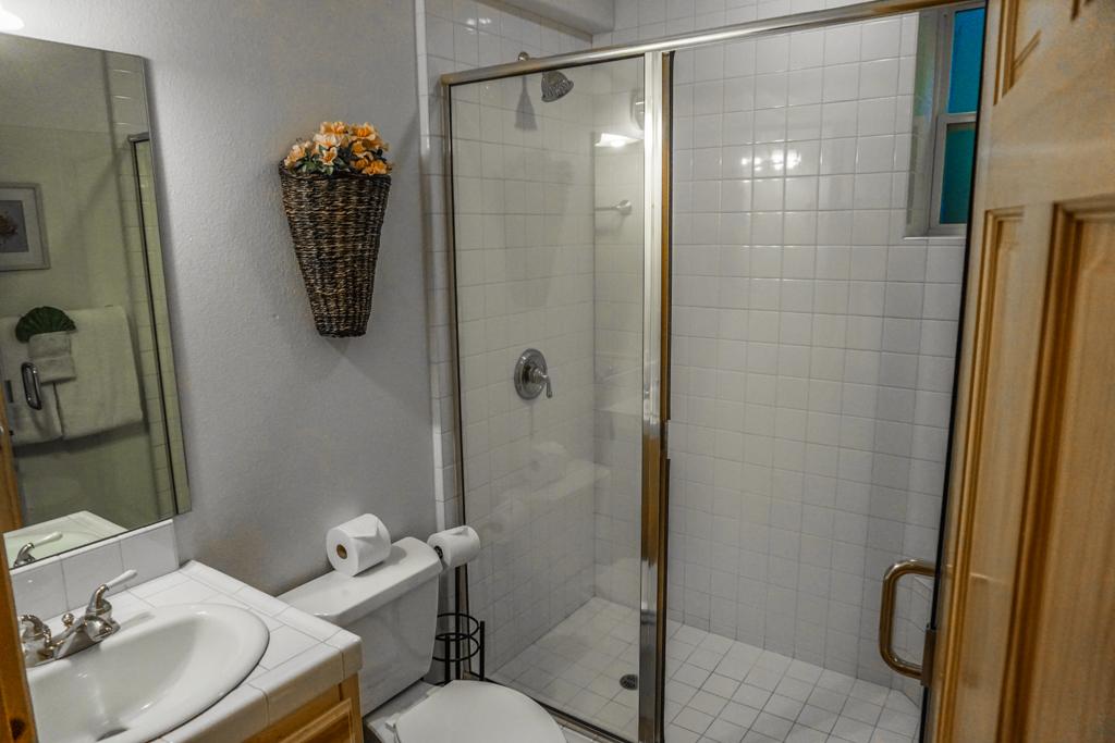 Lower-Level Bathroom