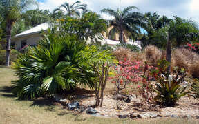 Naturally landscaped with local flora