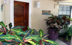 Front entrance with plants and mahogony door