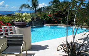 View of pool with palms and view