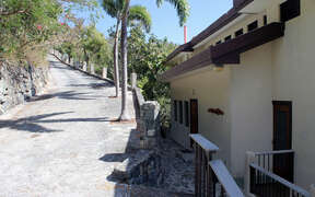 Long driveway with Natural stone wall topped with Caribbean Flora