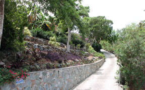 Beautiful native stone wall along driveway