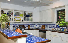 Fully equipped kitchen with custom tiles