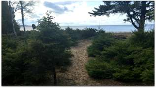STONINGTON CLEARVIEW COTTAGE: Enjoy the beautiful view of Lake Michigan! Pets welcome!
