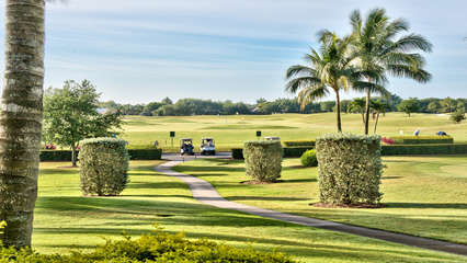 2 Championship Golf Courses Located Steps from the Condo! The Mustang and the Flamingo Golf Courses are Public; Free Golf in the Summer Months (Ask when Booking)!