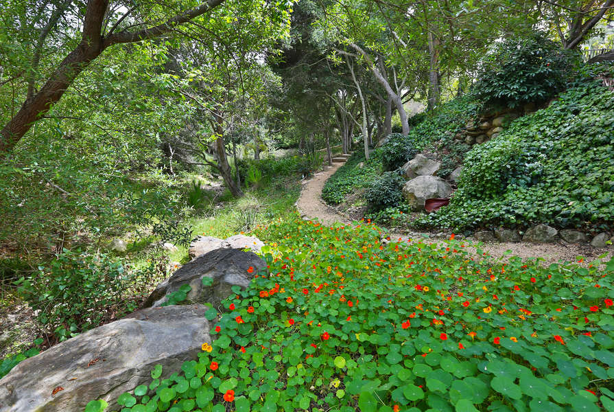 Wildflowers border the path in the Meditation Garden
