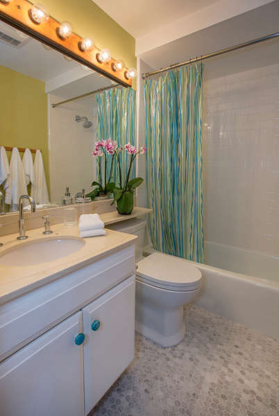 Hall Bathroom #2