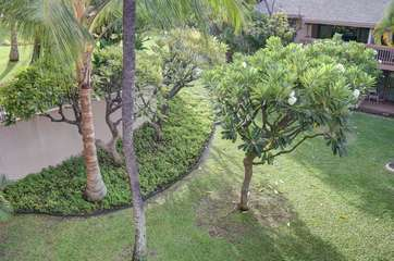 Tropical view from your lanai