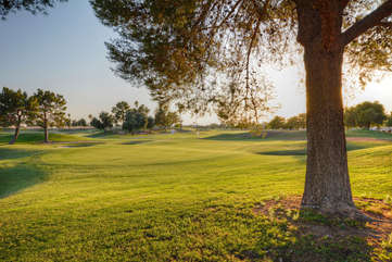 There are many public golf courses in Mesa and surrounding area
