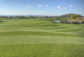 Mesa is a mecca for those who love golf