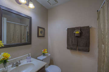 East master bath also has tub/shower combination