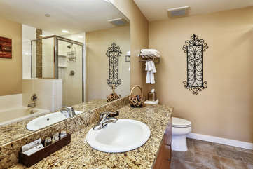 Master bathroom with large stone counter