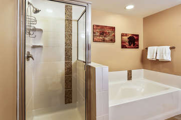 Master bathroom with separate shower and bath tub