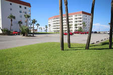 Patio View left / center
