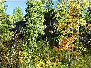 This beautiful home is nestled in an Aspen forest