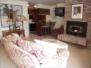 Sitting Room in Mother-In-Law Suite with Fireplace and Kitchen