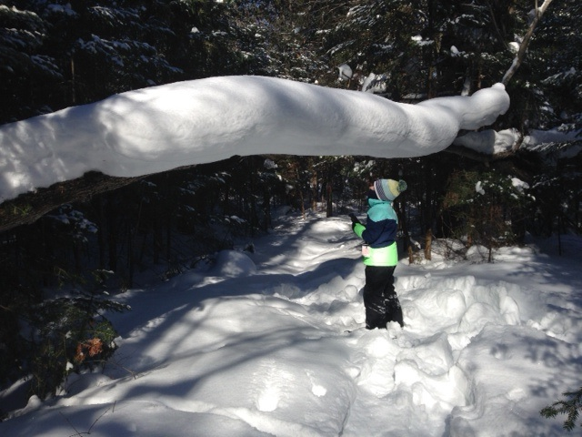 Snow shoeing on property