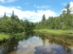 View of AuSable