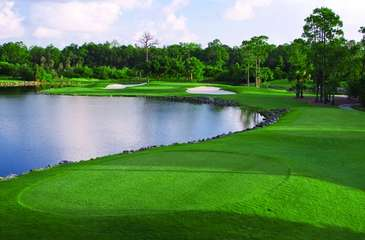 2 Championship Golf Courses Steps from the Condo! Public Courses with Free Golf Offered By Us in Off Season (Ask when Booking)!