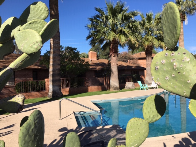 Sparkling pool and desert surroundings! Perfect for Summer and any time!