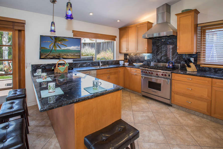 Great Kitchen w/professional appliances