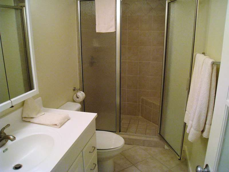 Guest bathroom; Walk in shower with shelf/ stool