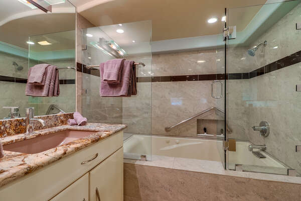 Master ensuite bathroom shower/ tub combo