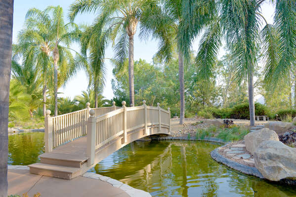 Backyard pond area with walking bridge