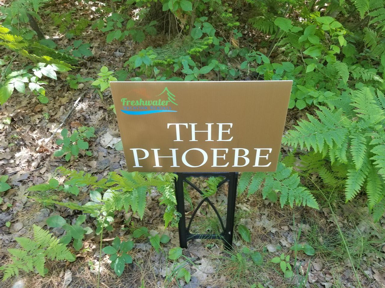 NettieBay Resort--The Phoebe--Green
