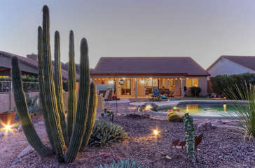 Professionally landscaped backyard includes a lovely cactus garden