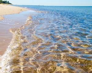 Newcome Beach Access