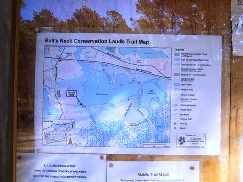 Not to be missed are the walking trails the Harwich Conservation Trust offers to the public. Download or pick up at trail map on site! - West Harwich Cape Cod - New England Vacation Rentals